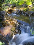 Colorado Stream Prints - Colorado Tranquility Print by Jeff Ball