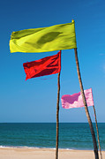 Beach Sign Framed Prints - Colored Flags Flapping In The Wind On A Beach Framed Print by Lothar Schulz