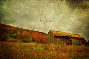Autumn Farm Scenes Posters - Colored Flight Poster by Emily Stauring