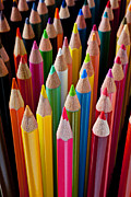 Row Photos - Colored pencils by Garry Gay