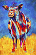 Michelle Wrighton Posters - Colorful Angus Cow Poster by Michelle Wrighton