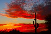 Red Sunsets Framed Prints - Colorful Arizona Sunset Framed Print by James Bo Insogna