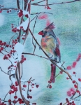 Colored Pencil Drawings Posters - Colorful Cardinal Poster by Michelle Hand