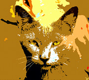 Portaiture Posters - Colorful Cat Poster by David Lee Thompson