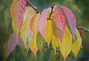 Yellow Leaves Painting Prints - Colorful Fall Leaves Print by Sharon Freeman