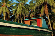 Fishing Boats Framed Prints - Colorful fishing boat surrounded by palm tress in Maldives Framed Print by Sami Sarkis