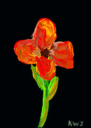 Bloosom Photos - Colorful Flower Painting On Black Background by Keith Webber Jr