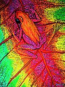 Frog Artwork Prints - Colorful Frog on Leaf Print by Nick Gustafson