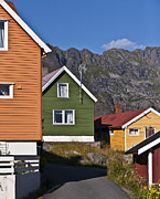 Norwegian Fishing Village Framed Prints - Colorful Houses Framed Print by Heiko Koehrer-Wagner
