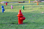 Potty Prints - Colorful Hydrants Print by Amelia Painter