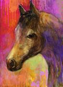 Austin Mixed Media Prints - Colorful impressionistic pensive horse painting print Print by Svetlana Novikova