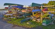 Kayaks Prints - Colorful Kayaks and Canoes at Belle Haven Marina in Alexandria Virginia Print by Brendan Reals