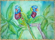 M C Sturman - Colorful Lorikeet Couple