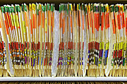 Palmetto Photos - Colorful Medical Folders by Skip Nall