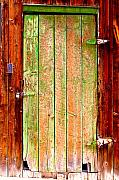 Rustic Posters - Colorful Old Barn Wood Door Poster by James Bo Insogna