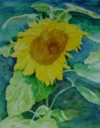 K Joann Russell Art - Colorful Original Watercolor Sunflower by K Joann Russell
