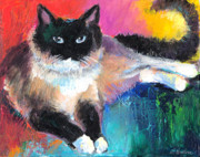 Pet Portraits Austin Prints - Colorful Ragdoll Cat painting Print by Svetlana Novikova