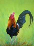 Marionette Paintings - Colorful Rooster by Marionette Taboniar