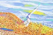 Deborah Benoit - Colorful Seagull