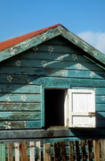 Shed Metal Prints - Colorful shack Metal Print by John Greim