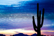 Stock Photo Art - Colorful Southwest Desert Sunrise by James Bo Insogna