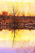 Sunset Prints Posters - Colorful Sunrise Textured Reflections Poster by James Bo Insogna