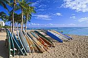 Surfboards Posters - Colorful Surfboards on Waikiki Beach Poster by George Oze