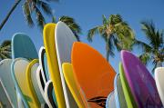 Longboard Photo Framed Prints - Colorful Surfboards Framed Print by Ron Dahlquist - Printscapes
