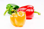 Peppery Posters - Colorful Sweet Peppers Poster by Setsiri Silapasuwanchai