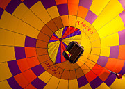 Hot Air Balloon Race Framed Prints - Colorful Underbelly Framed Print by Inge Johnsson