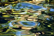 Colorful Water Ripples Print by Dave Fleetham - Printscapes