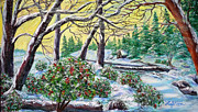 Cedars Paintings - Colorful Winter Garden by Lee Nixon