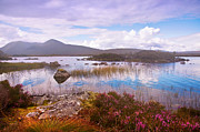 Rannoch Photo Prints - Colorful World of Rannoch Moor. Scotland Print by Jenny Rainbow