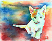 Animal Rescue Posters - Colorfull Kitty Poster by Christy  Freeman