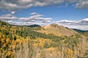 Fall Framed Prints Prints - Colors In Colorado Print by James Steele