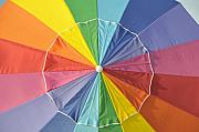 Color Wheel Art Posters - Colors of summer Poster by David Lee Thompson