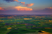Wheatfields Photo Prints - Colors of the Palouse Print by Mike  Dawson