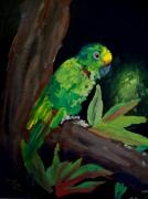 Rain Painting Framed Prints - Colors of the Parrot Framed Print by Mike Grubb