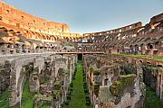 Gladiator Framed Prints - Colosseum Framed Print by Andre Goncalves