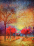 Walkway Digital Art - Colour Burst by Tara Turner