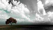 Field. Cloud Photo Prints - Colour Life Print by Peter Oconor