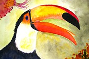 Yellow Beak Paintings - Colour Toucan by Veron Miller