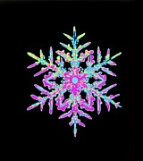 Winter Photos Prints - Coloured Computer-enhanced Image Of A Sno Print by Mehau Kulyk