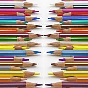 Coloured Pencil Print by Joana Kruse