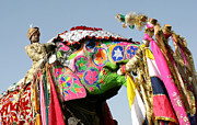 Festival Photos - Colourful Elephants At Elephant Festival by John Sones