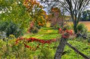 Country Scene Photos - Colourful Hollow by David  Hubbs
