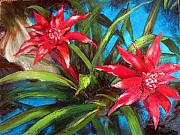Botanicals Originals - Colours of Hawaii Bromeliads by Denise Lockhart Bush