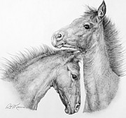 Wild Horses Drawings - Coltish Characters by Roy Kaelin