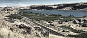 Vineyards Photo Originals - Columbia River by Tim Perry