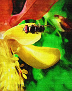 Abstract Columbine Prints - Columbine and Fly Print by Susan Lee Giles